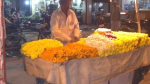 Delhi (16)