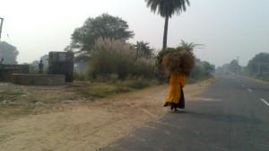 Jaipur (59)