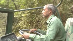 Ranthambhore National Park (5)