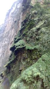 Canon del Sumidero (30)