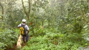 Isla Ometepe (40)
