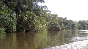 San Carlos (11)