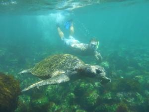 Isola San Cristobal (36)
