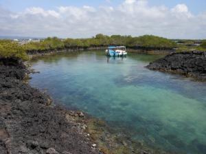 Isola Tintoreras (35)
