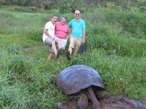 Reserva El Chato tartarughe giganti (31)