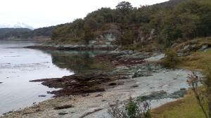 Parco Tierra del Fuego (11)