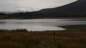 Parco Tierra del Fuego (39)