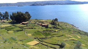Lago Titicaca (31)