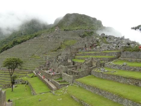 Machu Picchu (36)