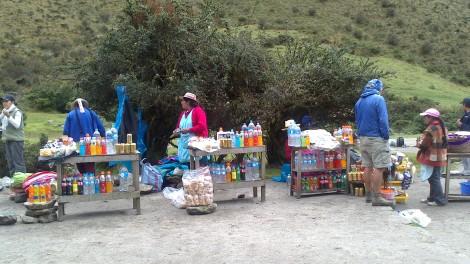 Machu Picchu (55)