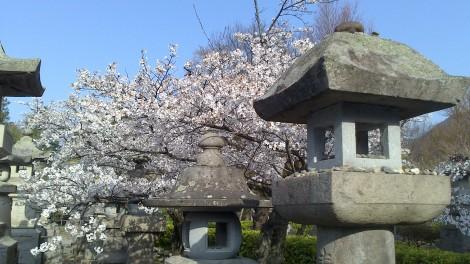 Nagano_Togakushi (30)