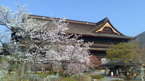 Nagano_Togakushi (31)
