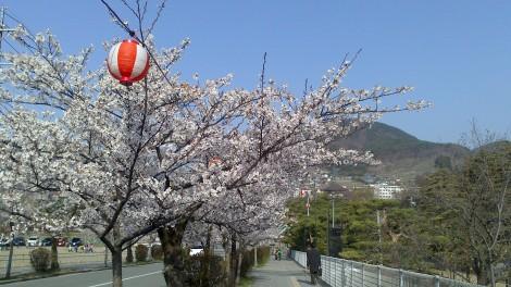 Nagano_Togakushi (39)