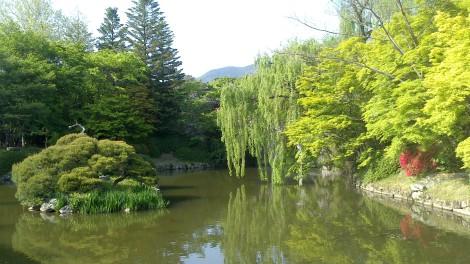 blog busan jeju gyeonju (111)