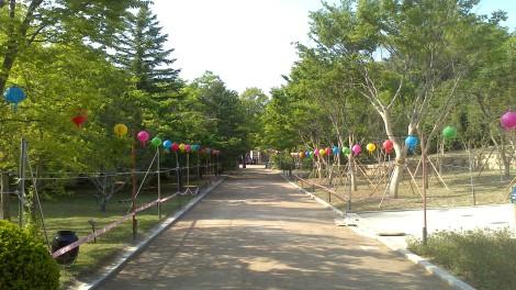 blog busan jeju gyeonju (114)