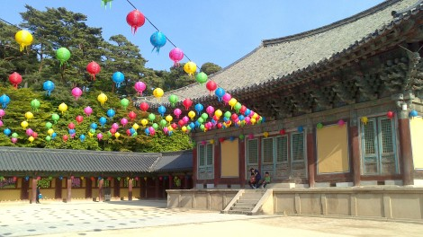 blog busan jeju gyeonju (118)