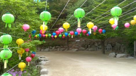 blog busan jeju gyeonju (120)