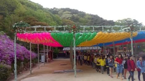 blog busan jeju gyeonju (122)