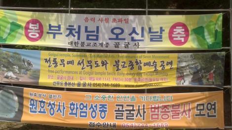 blog busan jeju gyeonju (125)