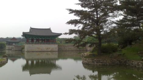 blog busan jeju gyeonju (140)