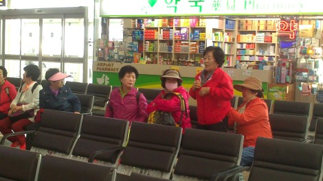 blog busan jeju gyeonju (69)