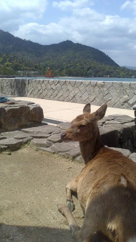 blog Hiroshima (5)