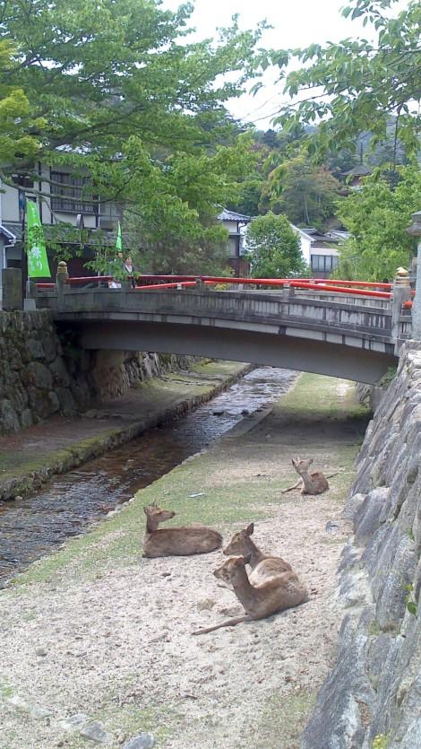 blog Hiroshima (7)