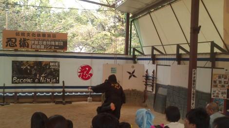 blog Kyoto Nara Iga (64)