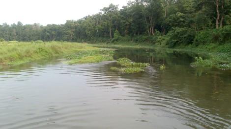 Chitwan (19)