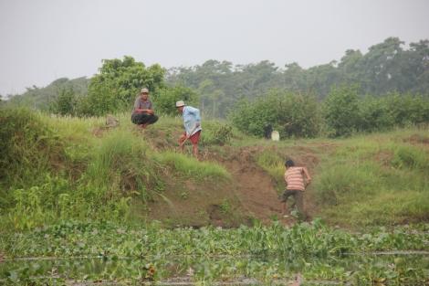 Chitwan (26)