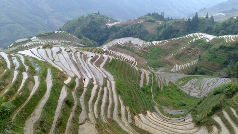 Guilin_Rice fields (19)