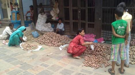 kathmandu (16)
