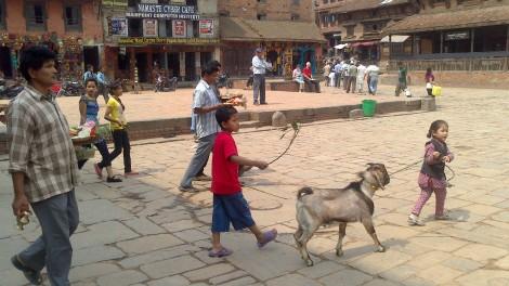 kathmandu (33)