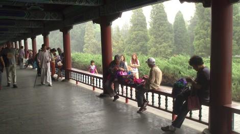 Pechino (69)